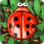 Beetle Bomp - Free Games Puzzle
